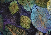 Fiber arts/art quilts / by Sarah Duffey Quilts