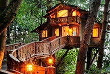 Treehouses / by Mary Brunzell