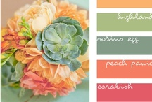 color inspirations / by Lisa Hager