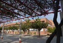 Nuestras bibliotecas / Algunas imágenes de nuestras bibliotecas y sus instalaciones / by Biblioteca Universidad de Alicante