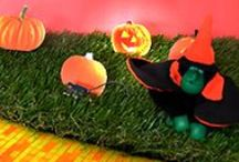 Happy Halloween / Inspiration to celebrate Halloween