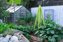 Edible Gardens / Information and inspiration for edible garden structures, plants, and layouts. Our trellises are a sturdy and modern addition for vines and climbing plants.