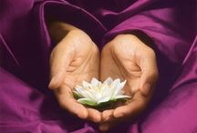 Peace. Zen. Stillness.  / by The Rad