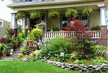 Garden / by Stacy Hampton