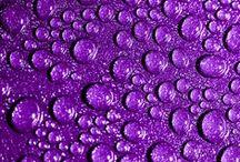 Purple / by The Rad
