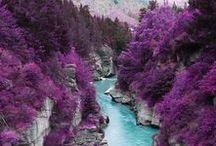 La rivière de fontainebleue / cette photo vient d'éspagne