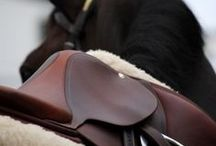Horse n Stuff / Your touch of equestrian style <3 Horses ,Tack ,clothes and more :) look here for the best of the best