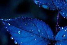 Цветоколористика и интерьер