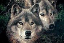 Wolf / Paint / Art