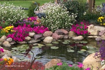 fish ponds & water features