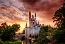 Disney, Disney, Disney! / by Laura E. Watts
