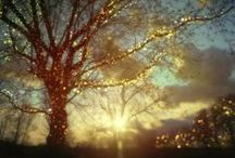 Light-Painted Landscapes and Structures / Painting the world with light....
