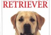 Perros - El mejor amigo del hombre - Libros el segundo mejor amigo del hombre - Dogs - Mundo Canino / Libros sobre perros. Librería Central Librera calle Dolores 2 Ferrol Tfno 981 352 719 Móvil 638 59 39 80