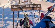 Bächli Bergsport - Skitouring
