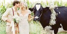 Yorkshire Wedding