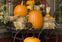 A Fall Harvest! Pumpkins! / Anything and Everything relating to the Fall and its Harvest and of course the most wonderful harvest of all, Pumpkins!! / by Trish Robinson