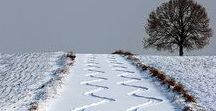 Zimní krása-Winter / Zasněžená krajina