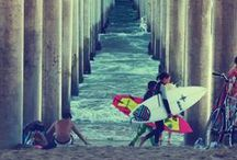 Surf Culture / by LOCAL surf