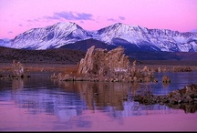 """Purple Mountain Majesties / """"Fighting Alzheimer's is extremely hard and long process somewhat similar to climbing mountains. However, just like mountains with hard work, dedication, inspiration, and sometimes help from others we can fight and overcome this disease."""" -Ryan Kushner (ALZ Star)"""