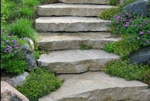 Landscaping & Outdoor Ideas  / by Toni Gallagher