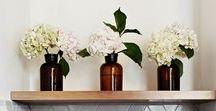Vessels and Containers / See what vessels and containers we are loving right now at Peony.