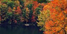 Autumn / Winter Inspiration