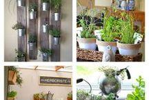 botanical stuff