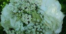 Bukiety ślubne - realizacje / #wedding #decor #cambria #decoration #flower #love #party #marriage #kwiaty #dekoracje #slub #dekoracjeslubne
