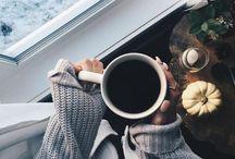 winter ✿