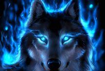 Wolf Drawnigs