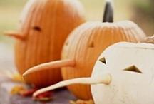 hello halloweenie / ideas...always have to be thinking ahead..