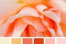 Color Palettes - Scrapbooking / Color is so much fun and looking at color palettes makes me happy.