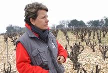 Wineries, Vines & Vineyards / Wineries & Traveling