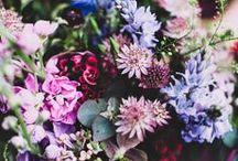 bouquet / by Heidi Leon Monges