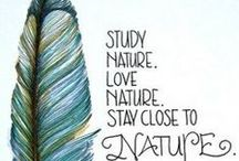 Science & Nature Study / Ideas and activities for nature study and homeschooling science.
