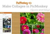 PicMonkey Tips & Tuts / Tips for using Picmonkey