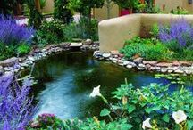 Landscape and Gardening Ideas / by Heather Bradley