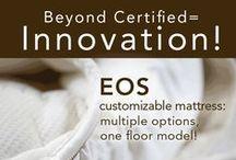 Naturepedic Adult Mattresses / Adult luxury certified organic mattresses