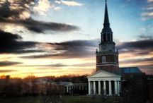 Wake Forest / by Emily Benkendorfer
