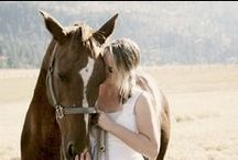 Horse Love / Nothing like riding a horse, and feeling free! / by A Beautiful Heart