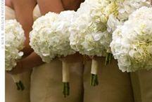 Wedding Flowers / by Allison Hydzik
