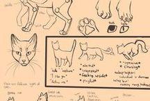 Animal Drawing Tutorials
