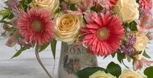 Bouquette / Kytice / flowers