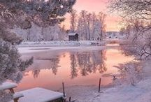 Winter / Zima