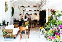 Floral studio inspiration