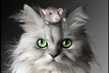"""CATS. DO RULE  ~ / by Margie """"T""""...for TIME spent on Pinterest!!!"""