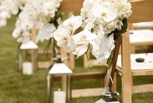 Wedding & Events / El dia mas importante de tu vida en este momento