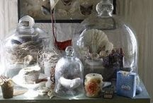 Decorating With Cloches... / by Anne Berbling