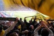 Stadion / Stadionbesuche der 1. und 2. Bundesliga sowie der DEL