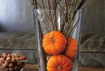 Fall/Halloween / by Susan Benz Moore
